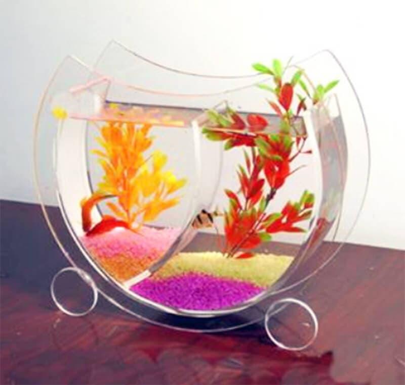 Small Acrylic aquarium