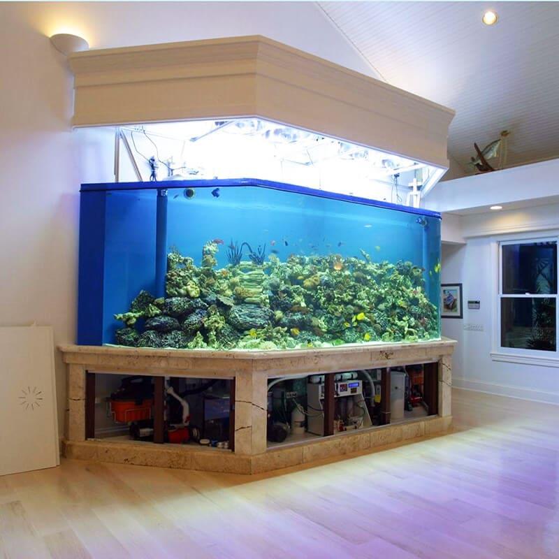 plexiglass aquarium